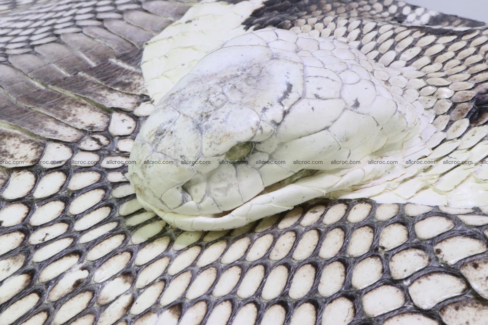 Cobra skin ladies handbag with head of cobra 194 Foto 10