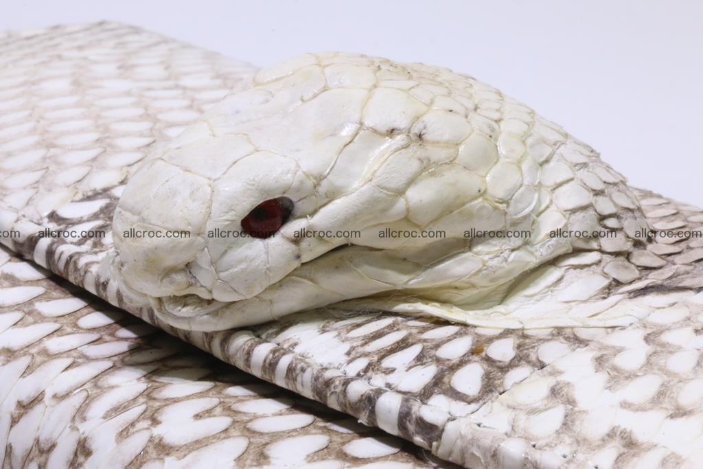 Cobra skin wallet for lady 359 Foto 6