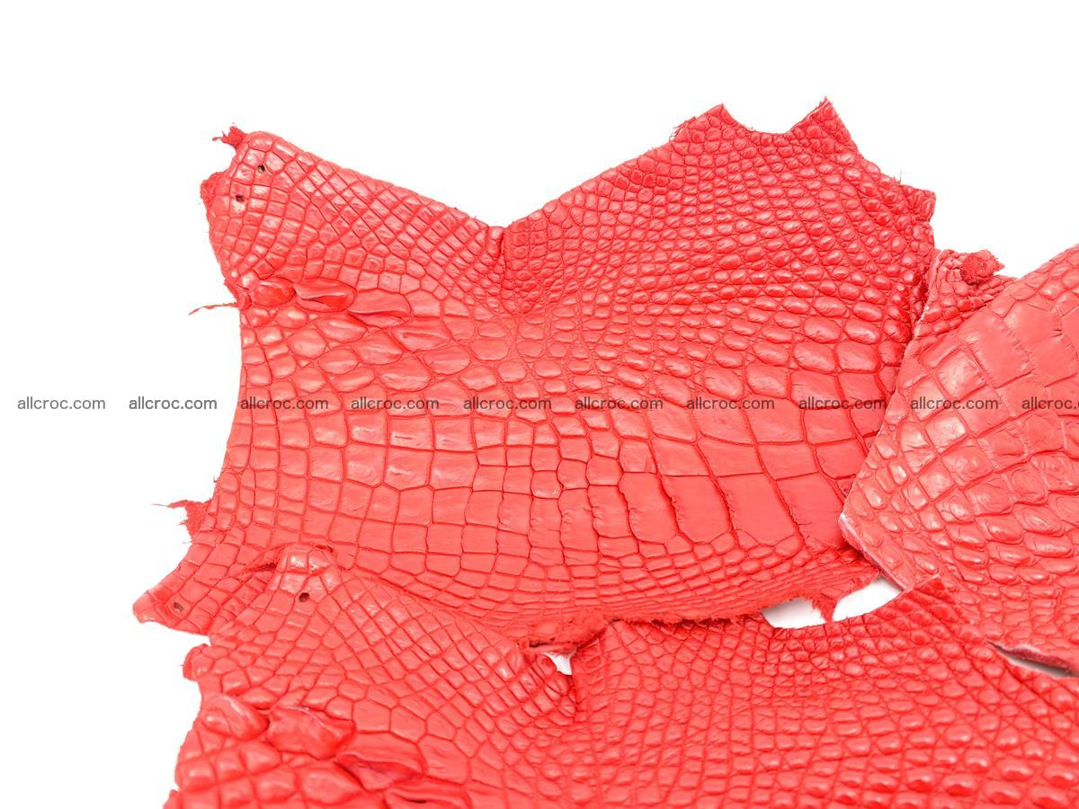 Crocodile leather for handcrafting  837 Foto 4