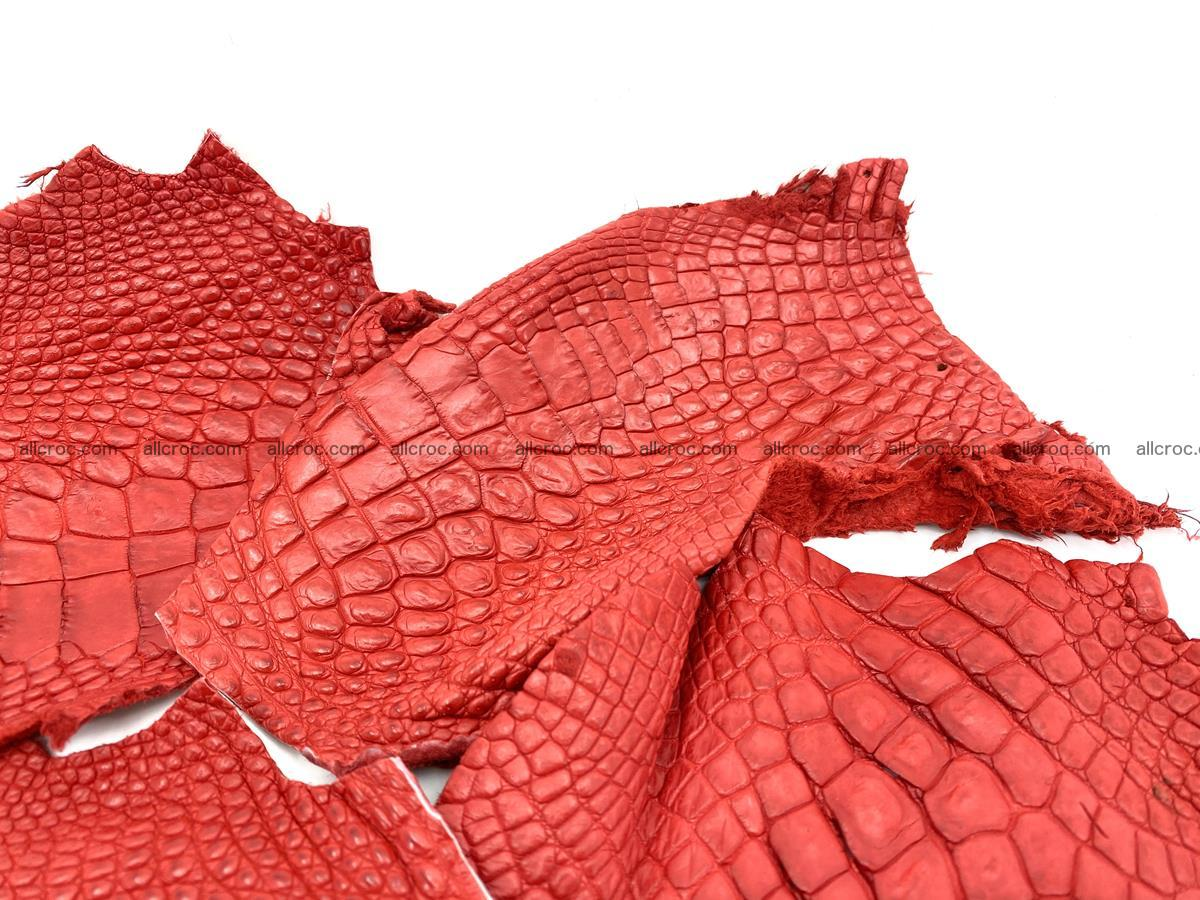 Crocodile leather for handcrafting  837 Foto 1