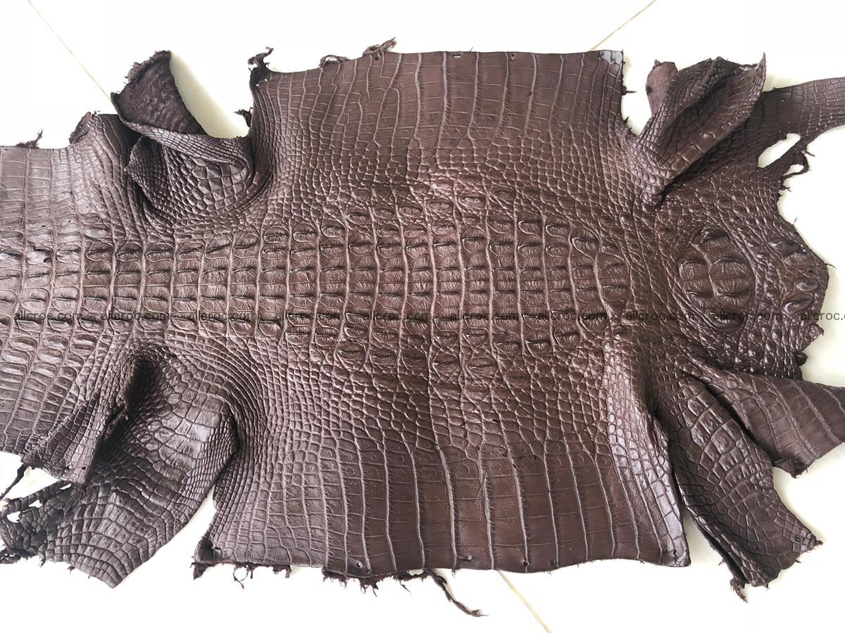 Genuine Siamese crocodile skin, hide hornback part 422 Foto 3