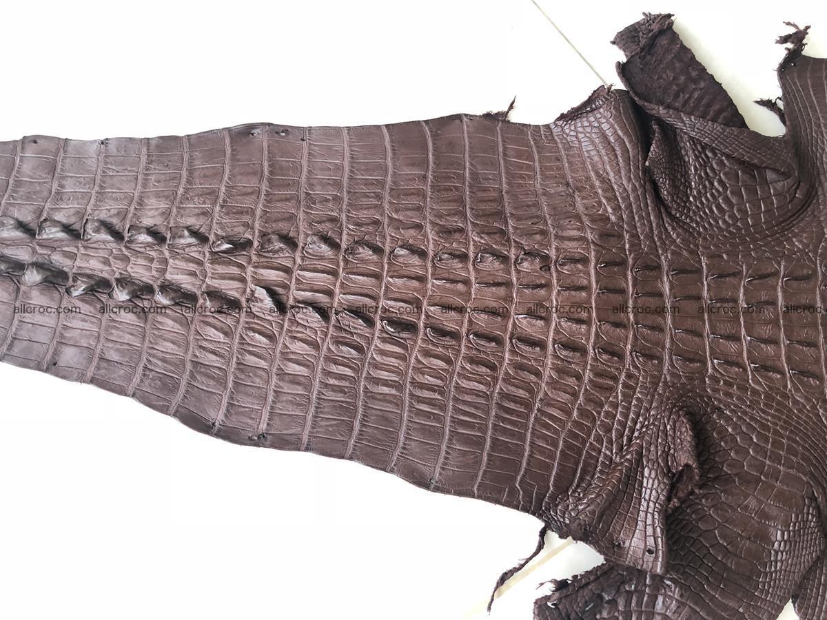 Genuine Siamese crocodile skin, hide hornback part 422 Foto 4