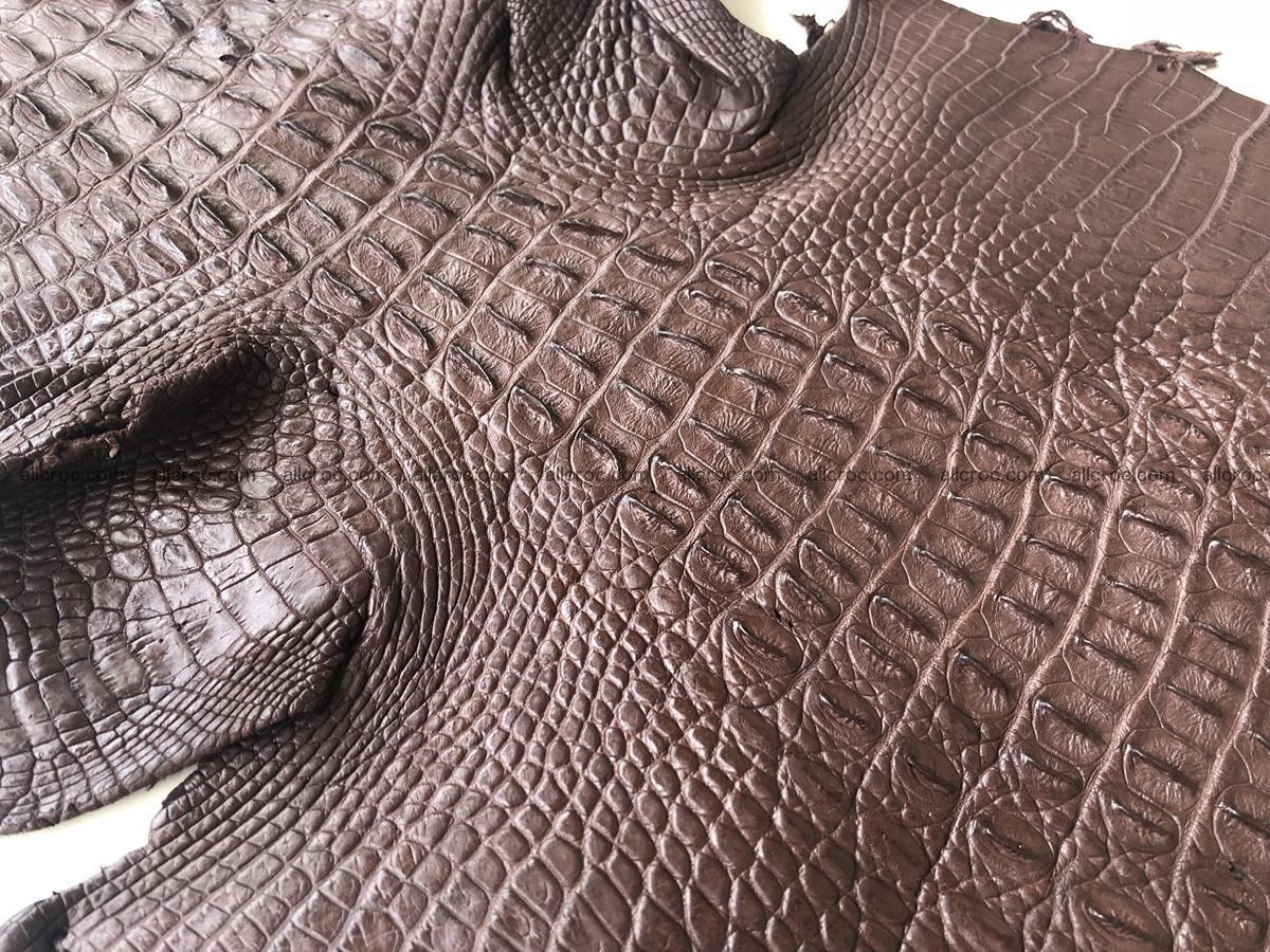 Genuine Siamese crocodile skin, hide hornback part 422 Foto 6