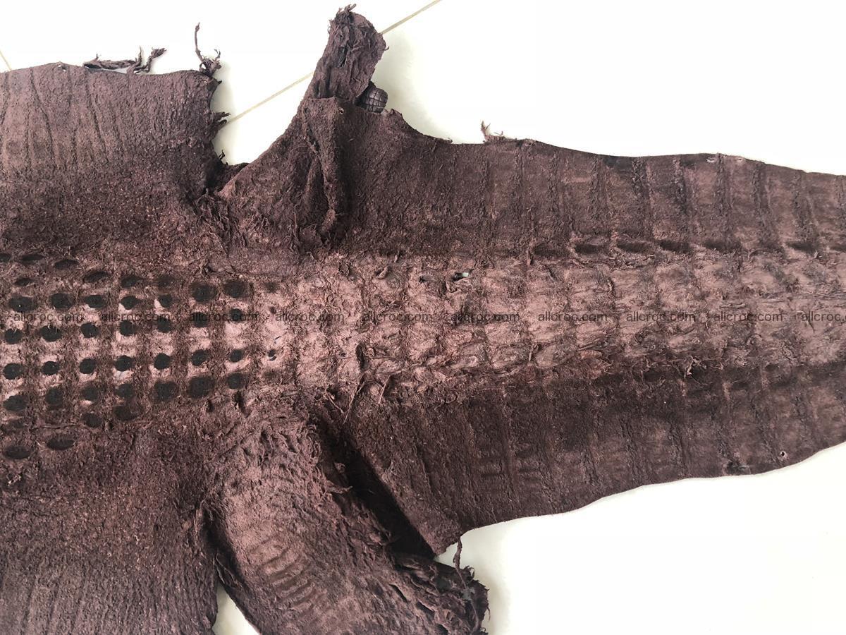 Genuine Siamese crocodile skin, hide hornback part 422 Foto 13