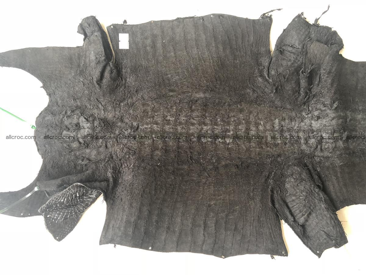 Genuine Siamese crocodile skin, hide hornback part 421 Foto 7