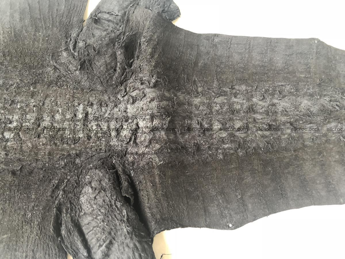 Genuine Siamese crocodile skin, hide hornback part 421 Foto 8