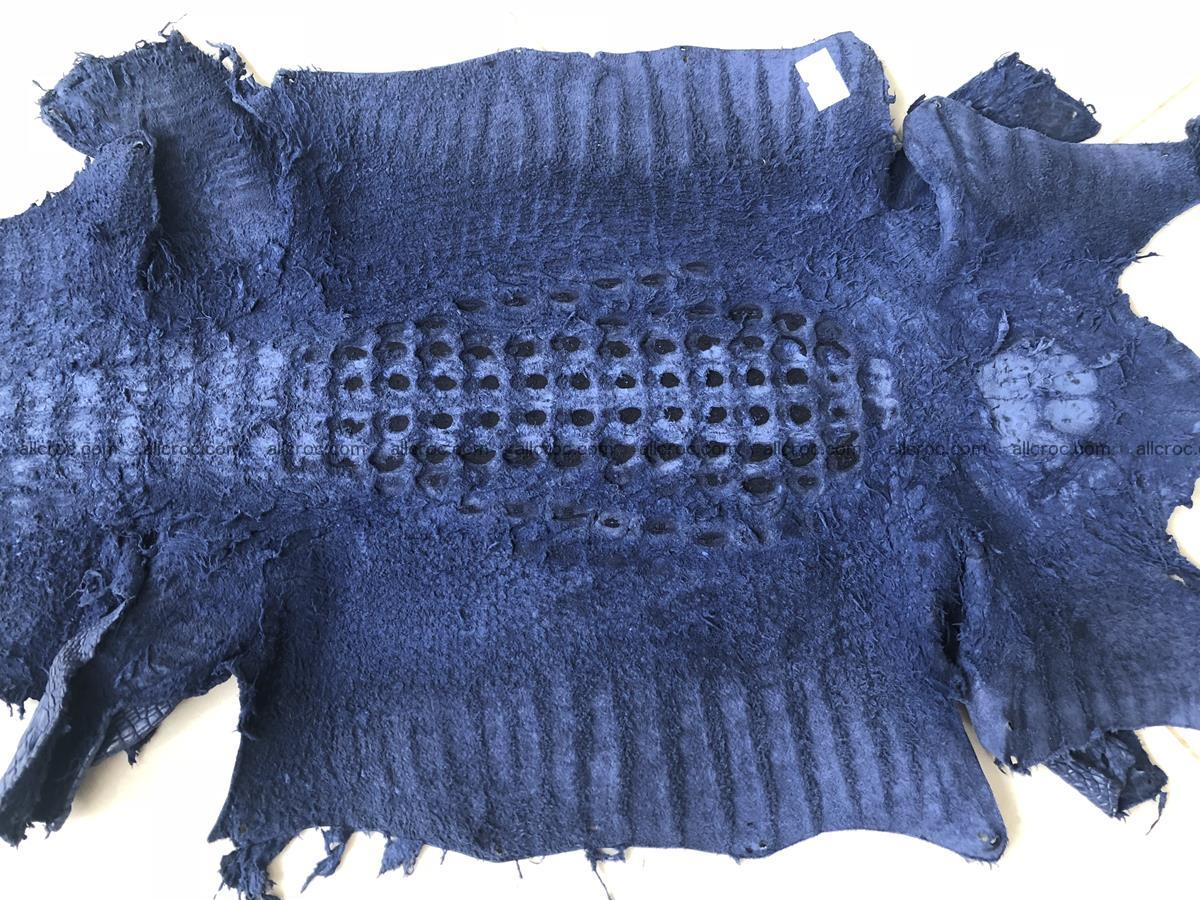 Genuine Siamese crocodile skin, hide hornback part 420 Foto 10