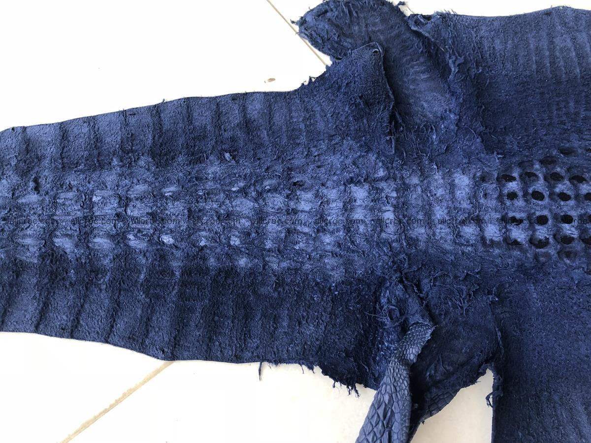 Genuine Siamese crocodile skin, hide hornback part 420 Foto 9
