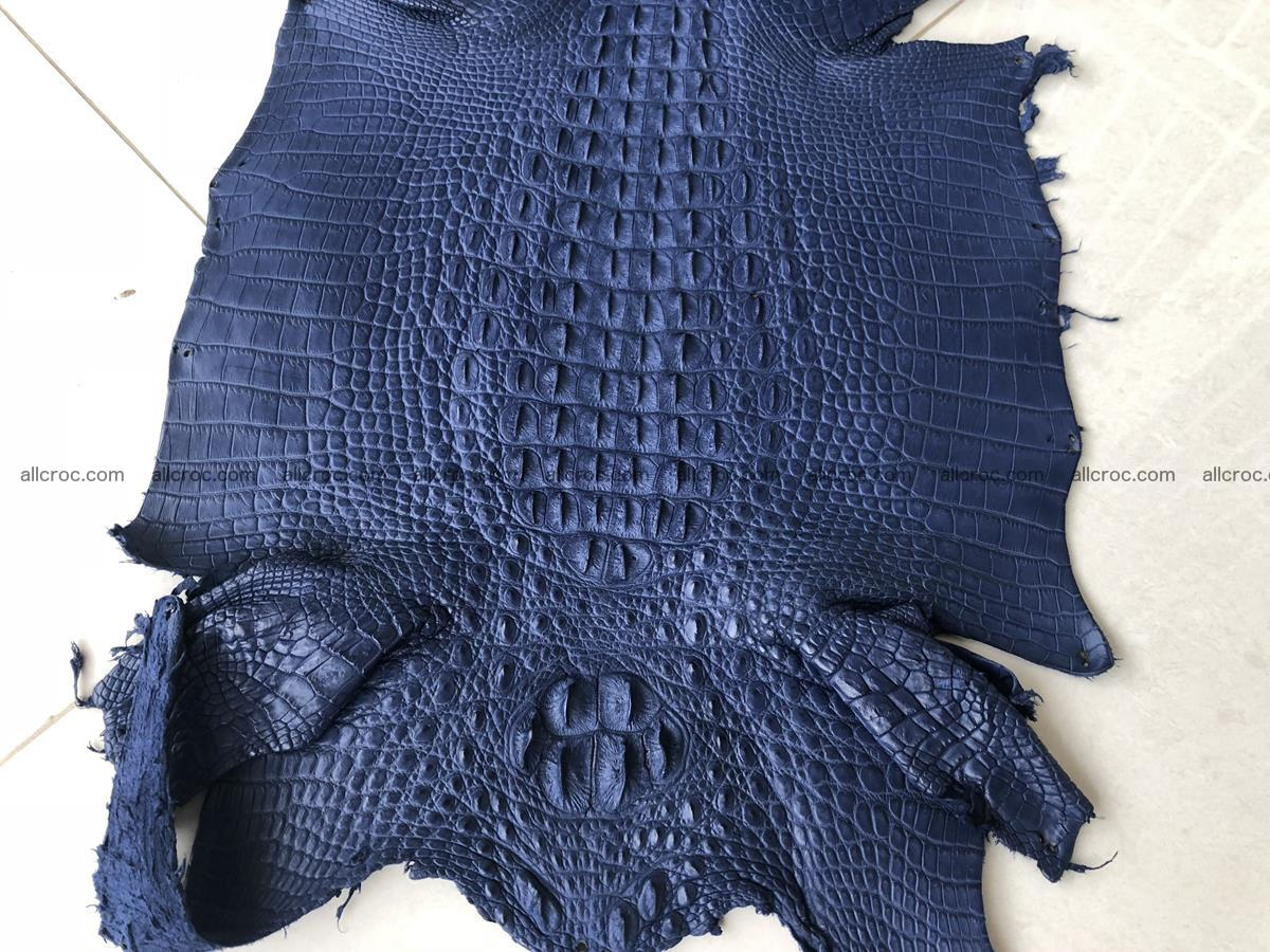 Genuine Siamese crocodile skin, hide hornback part 420 Foto 0
