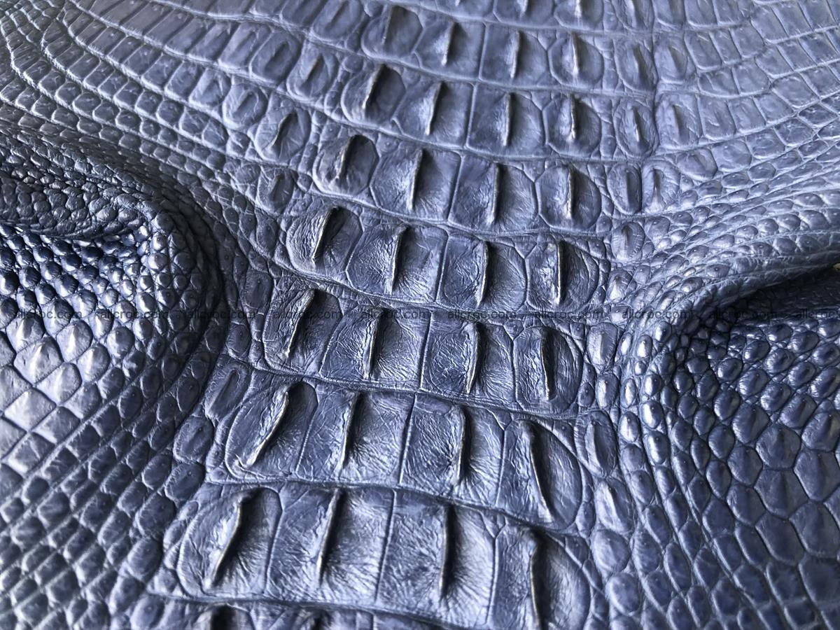 Genuine Siamese crocodile skin, hide hornback part 420 Foto 6