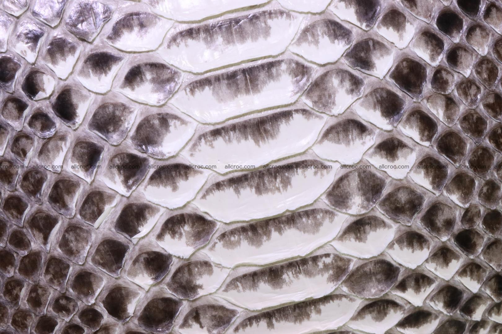 Python skin ladies handbag 221 Foto 5