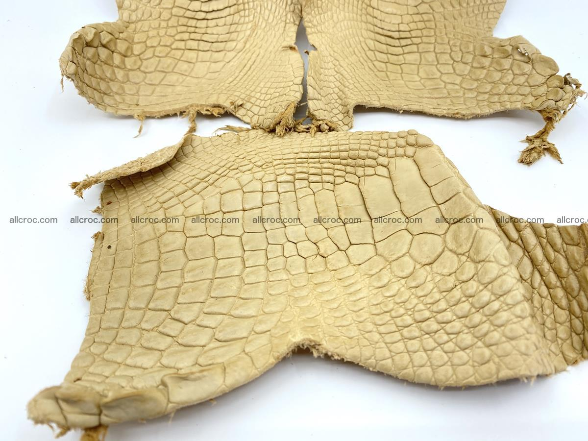Crocodile leather for handcrafting  836 Foto 3