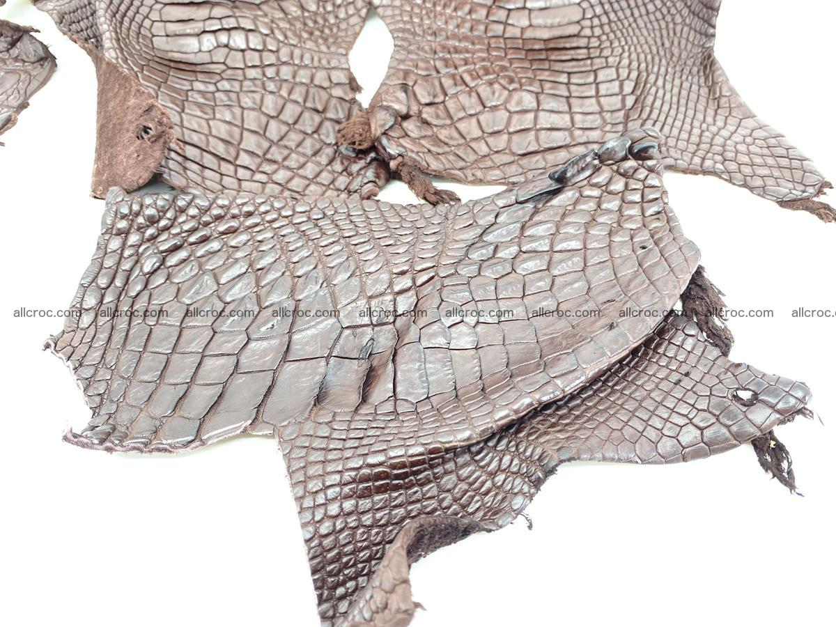 Crocodile leather for handcrafting  835 Foto 2