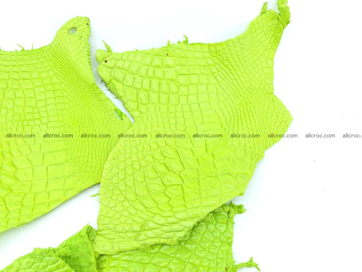 Crocodile leather for handcrafting  828 Foto 1