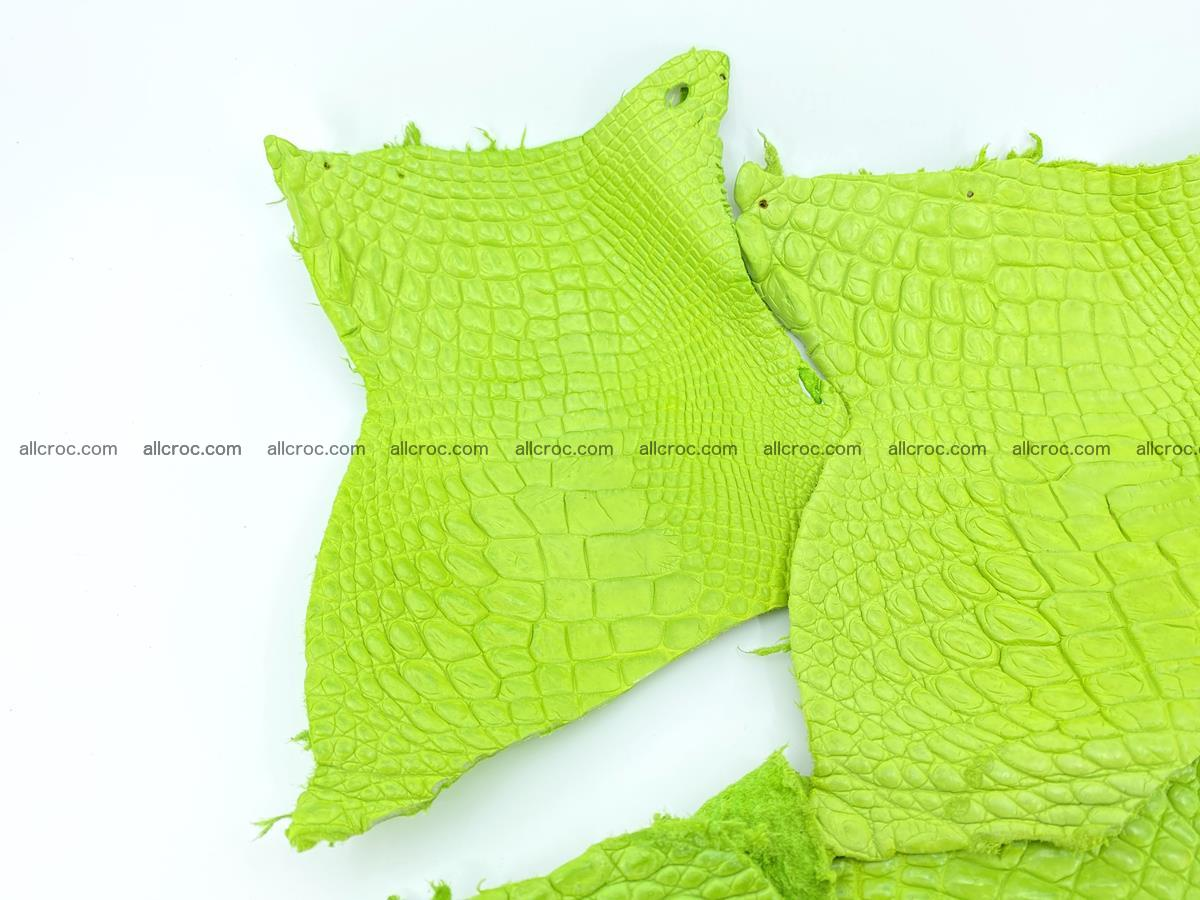Crocodile leather for handcrafting  828 Foto 2