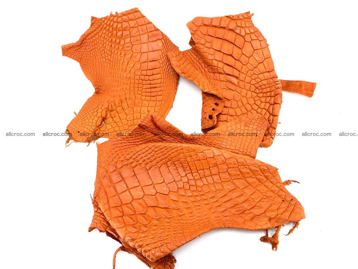 Crocodile leather for handcrafting  831 Foto 0