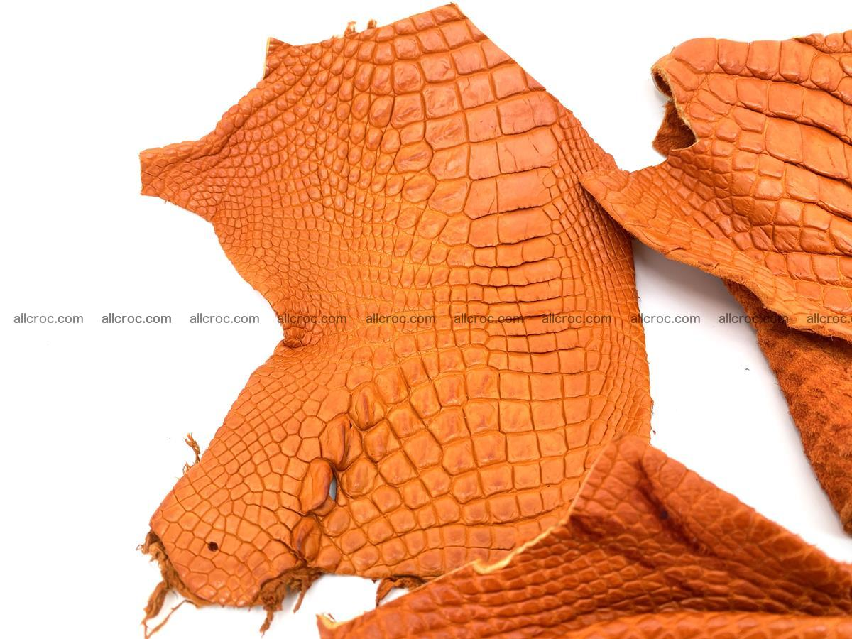 Crocodile leather for handcrafting  831 Foto 1