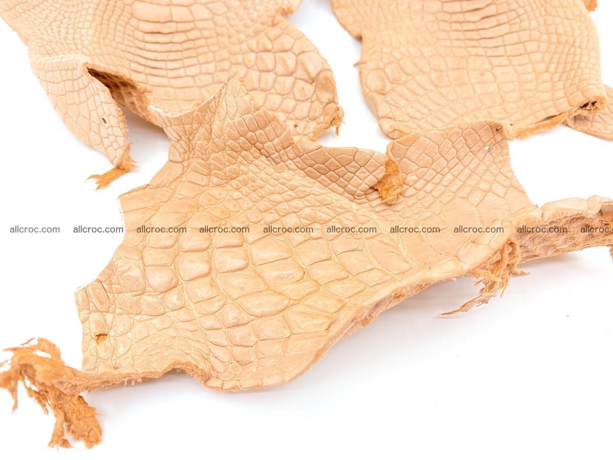 Crocodile leather for handcrafting  839 Foto 2