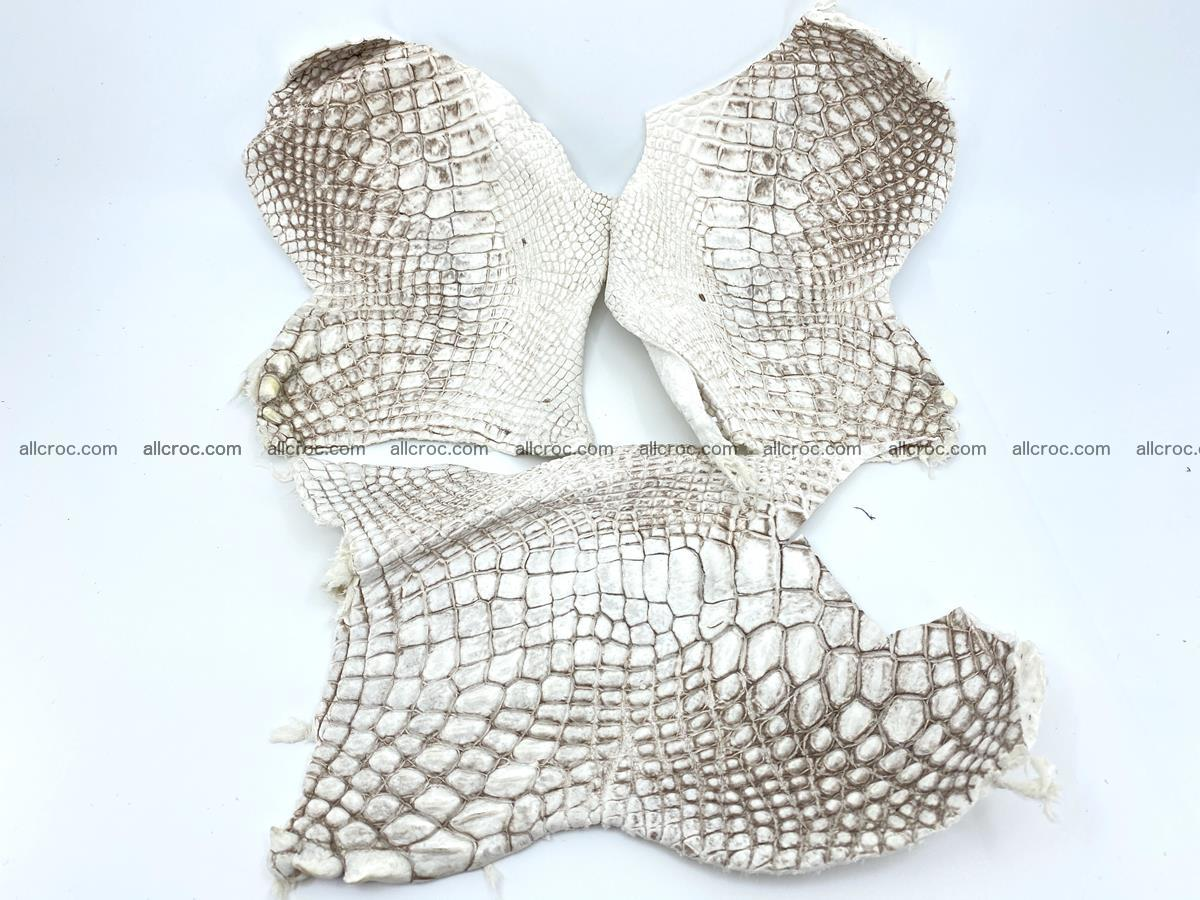 Crocodile leather for handcrafting  834 Foto 0