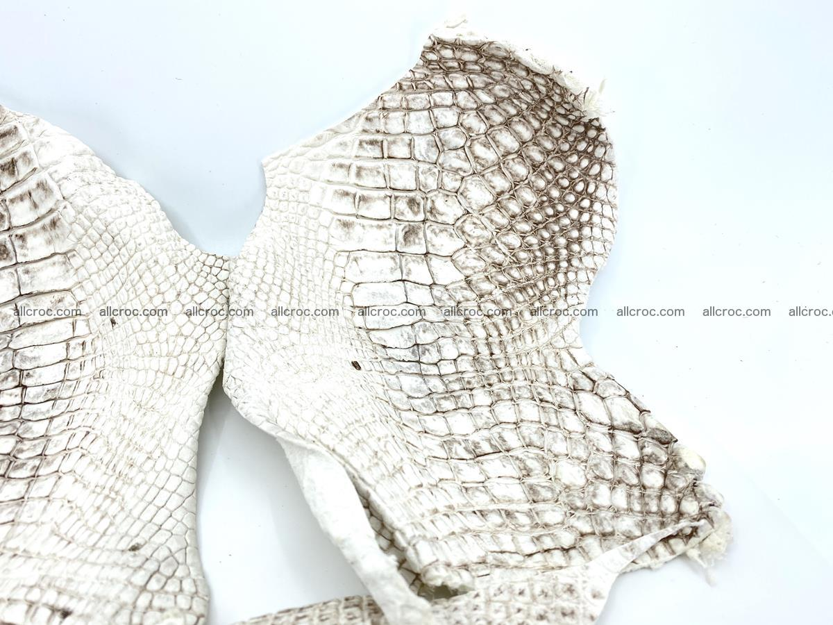 Crocodile leather for handcrafting  834 Foto 3