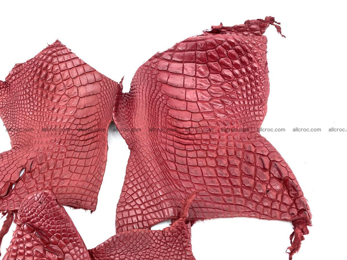 Crocodile leather for handcrafting  829 Foto 1