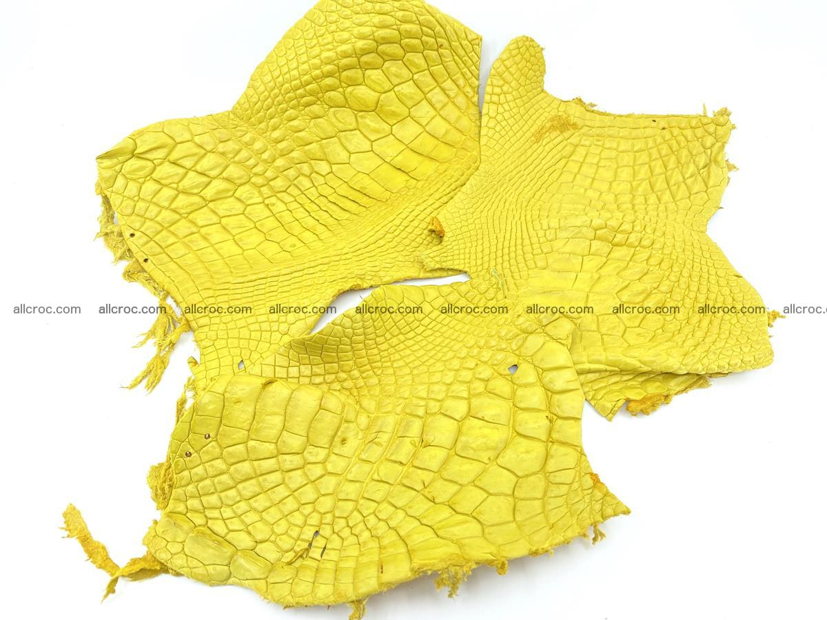 Crocodile leather for handcrafting  826 Foto 0