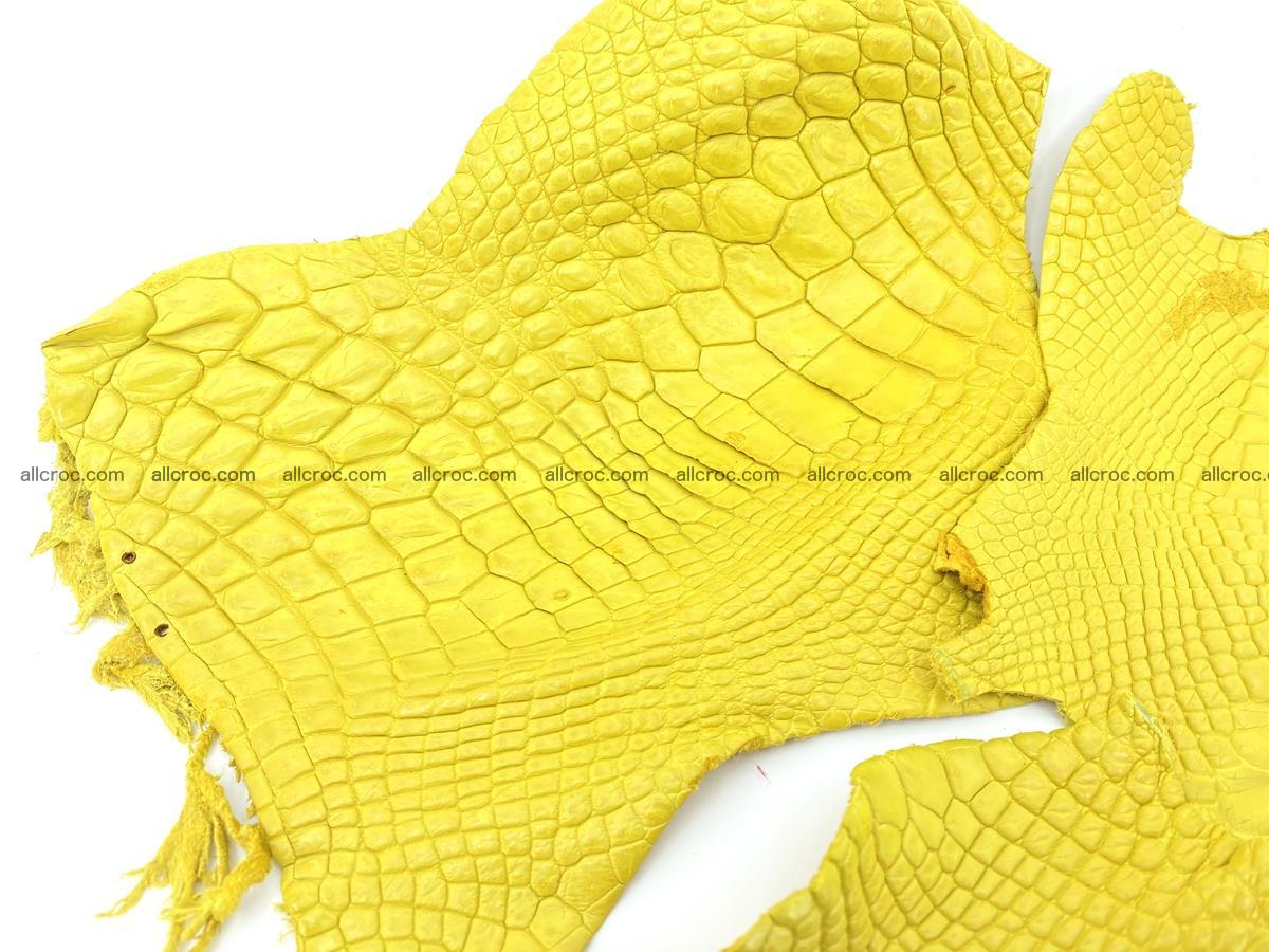 Crocodile leather for handcrafting  826 Foto 1