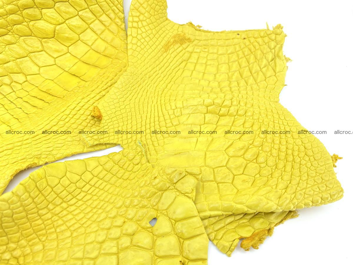 Crocodile leather for handcrafting  826 Foto 3