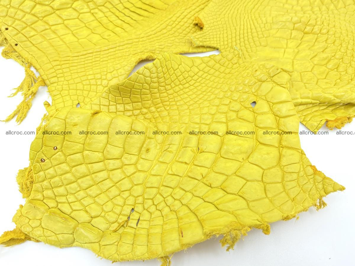 Crocodile leather for handcrafting  826 Foto 2