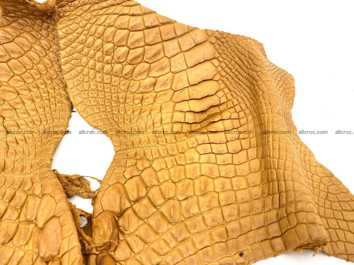 Crocodile leather for handcrafting  840 Foto 2